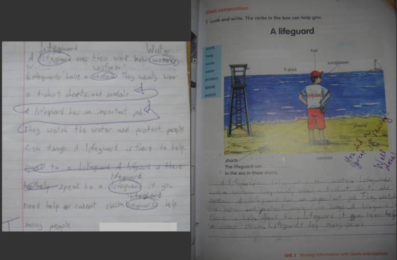 Reflections about Parallel Teaching Writing Instruction ...